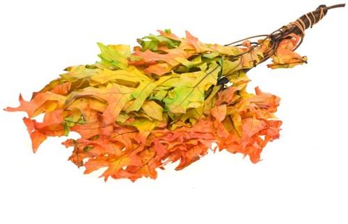 Scarlet Oak leaf preserved Autumn Leaves  Gepreserveerd Eikenblad onmisbaar in droogboeketten
