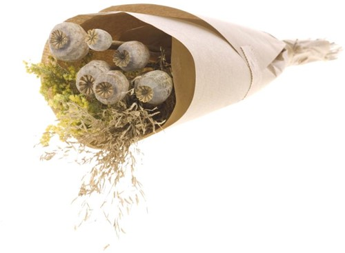 Droogbloemenboeket papaver in craft paper natural  Droogbloemenpakket in kraft