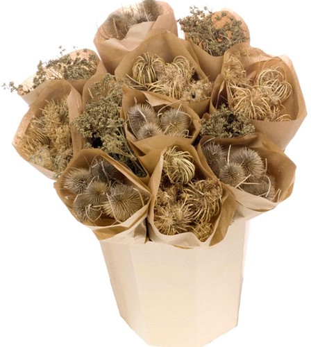 Droogbloemenmix natural mix Chardon,Ammi majus,Gypsophila droogbloemboeketten 3 verschillende in kraft