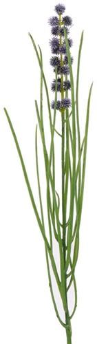 Grasbundel BLAUW bloeiend 50 cm/bundel Zijdebloem