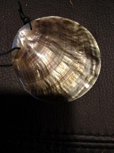 Gepolijst Nautilus met gaatje voor hanger of sieraad/ketting Uniek stuk Schelp