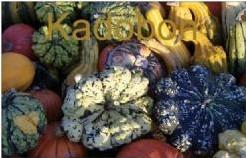 Cadeaubon Kadobon - kadobon 50 euro