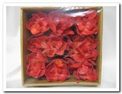 Sola Magnolia rood / doosje 18stuks Sola Magnolia r