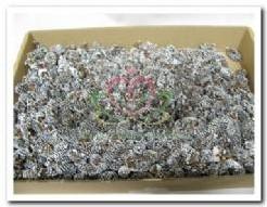 Birch Pine Frosted doos 500 gram Birch Pine Fros