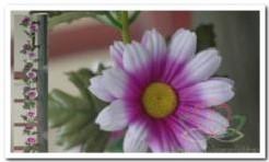 Gerbera zijde bloemen guirlande Wit/paars Gerbera zijde