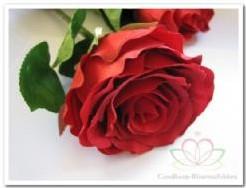 Roos zijdebloem Rood 30*8cm. / tak Roos zijdebloem