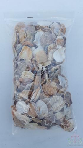 Mantelschelp - Jacobsschelp 400 gram