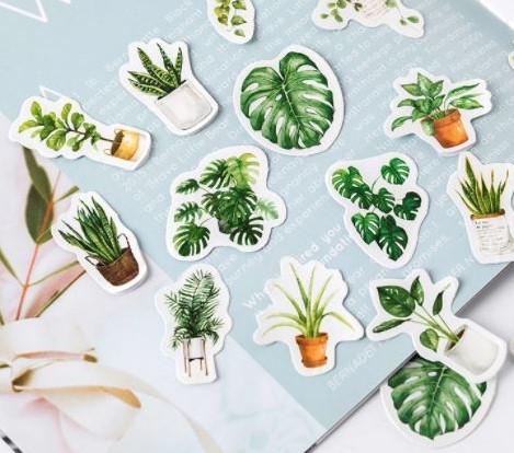 Botanical Stickers Labels Assortiment +/- 40st Leuk voor stekjesboxen
