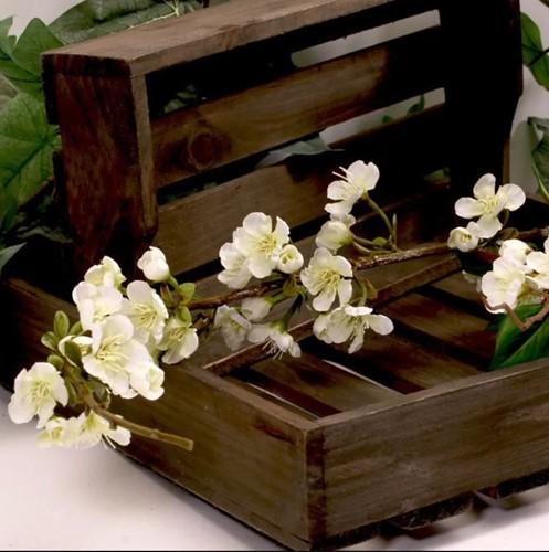 Bloesemrank bloesemtak Japanse kers Wit 115cm. Bloesemrank bloesemtak