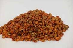 Umboniumschelpen oranje, 200 gram
