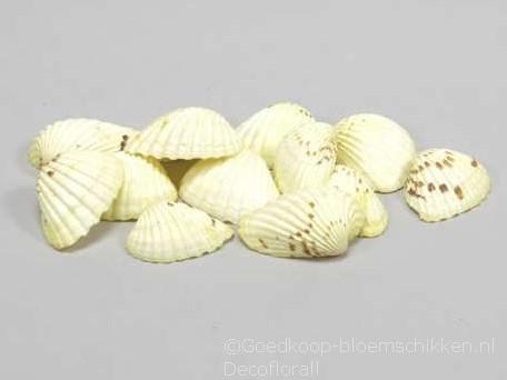 Tiger Chippy schelpen geel, 500 gram