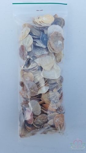 Mantelschelp - Jacobsschelp 200 gram