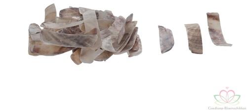 Raisorblade Shell - Stroken schelp 1 kilo