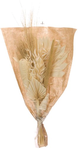 Droogbloemenboeket Bouquet luffa mix bleached white bleached white Droogbloemenpakket in mooie hoes