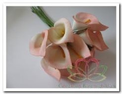 Calla creme-roze 3. 5*5 cm. / bundel Calla creme-roz