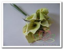Calla lichtGroen 3. 5*5 cm. / bundel Calla lichtgroe