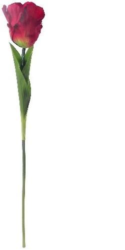 Tulp Parkiettulp ROOD / stuks 56cm. Zijde Tulpen