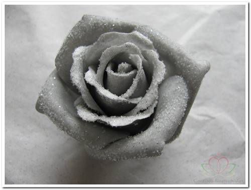 foam Rose Emilia 6cm. snow Grey Doos 42 voordeelpak