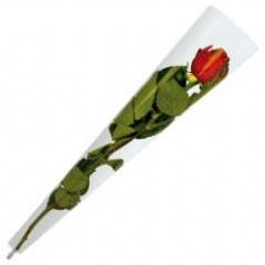 Hoes voor enkele bloem transparant PAK50 Valentijn Gift 45x12x3cm 30micron