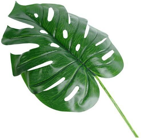 Monstera blad Monsterablad 17*40cm. /st - 17*40 VT Wonen Botanical